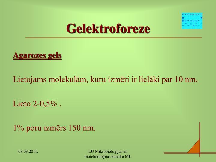 Gelektroforeze