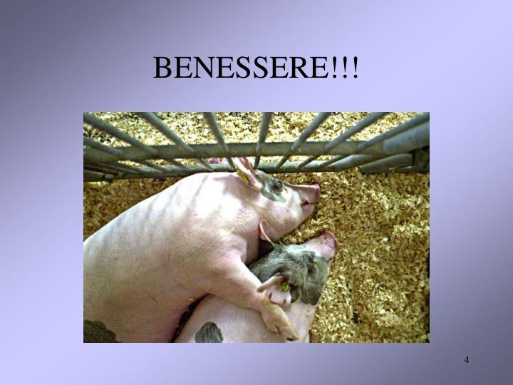 BENESSERE!!!