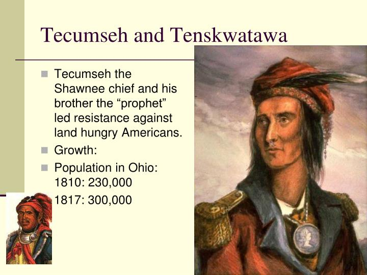 "Tecumseh the Shawnee chief and his brother the ""prophet"" led resistance against land hungry Americans."