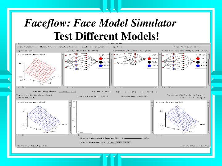 Faceflow: Face Model Simulator