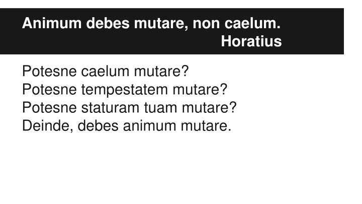 Animum debes mutare, non caelum.