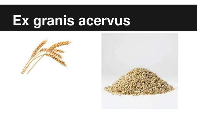 Ex granis acervus