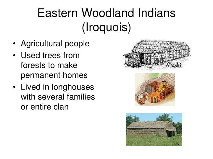 Eastern Woodland Indians (Iroquois)