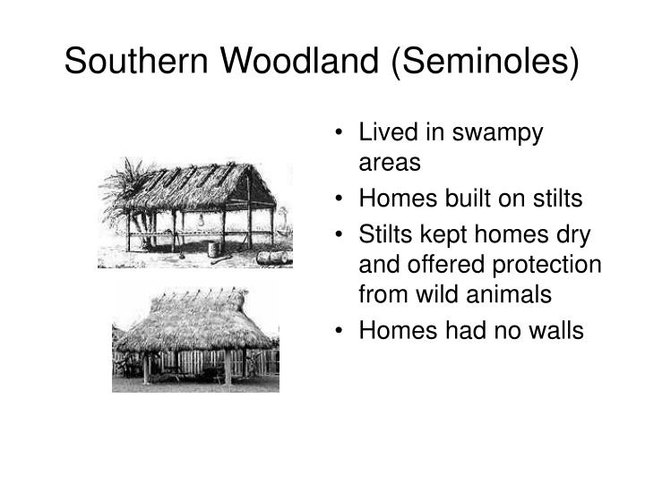 Southern Woodland (Seminoles)