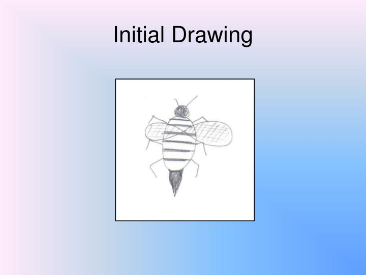 Initial drawing