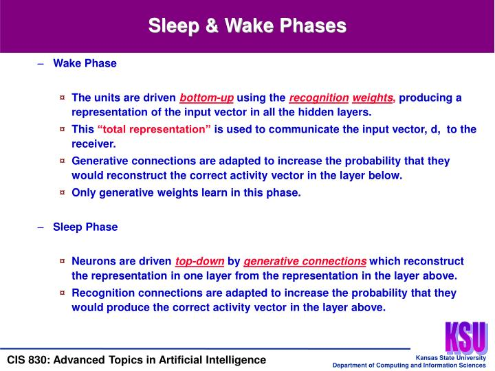Sleep & Wake Phases