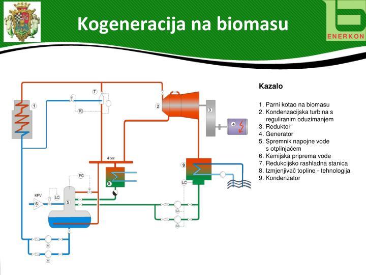 Kogeneracija na biomasu