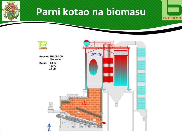 Parni kotao na biomasu