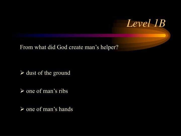 Level 1B
