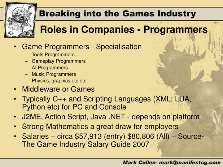 Roles in Companies - Programmers