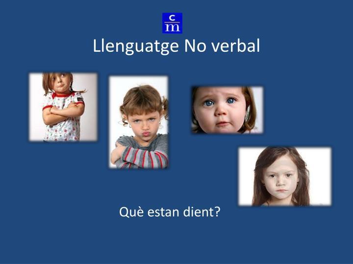 Llenguatge No verbal