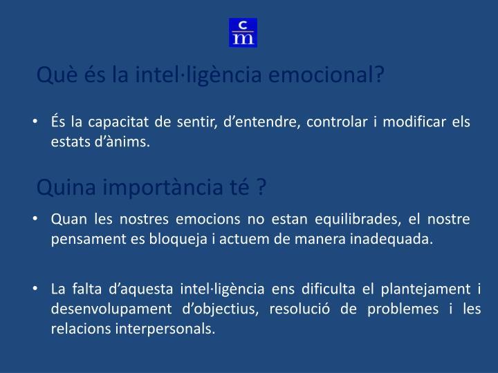Què és la intel·ligència emocional?