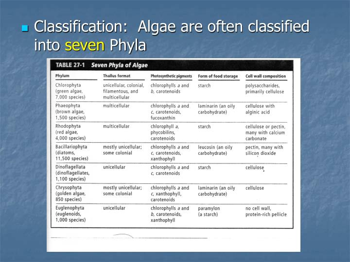 Classification:  Algae are often classified into