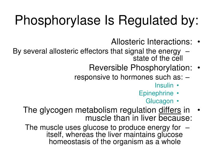 Phosphorylase Is Regulated by: