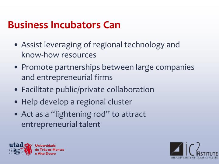 Business Incubators Can