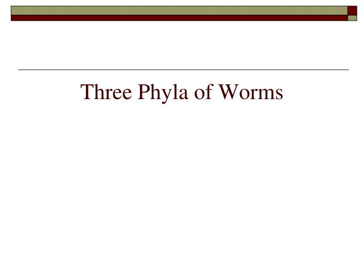 Three phyla of worms