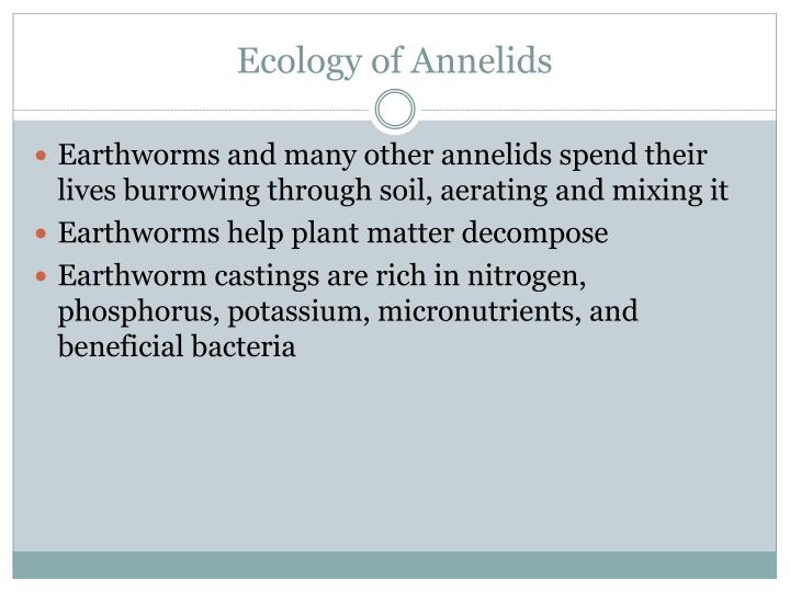 Ecology of Annelids