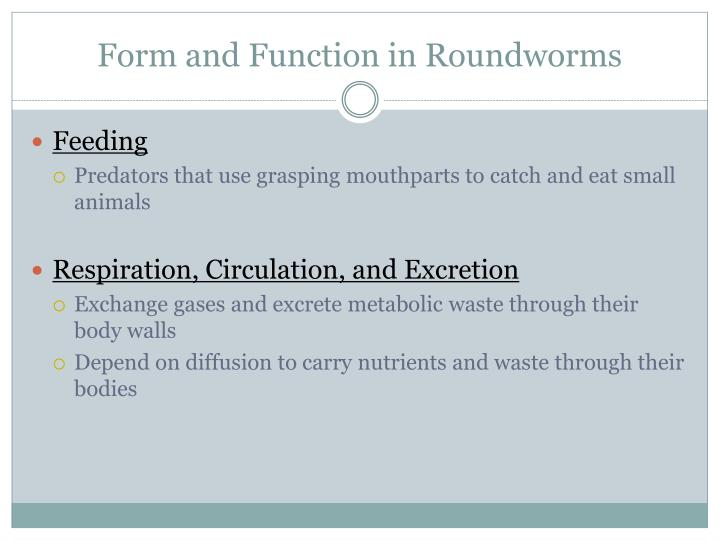 Form and Function in Roundworms