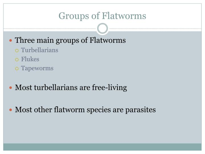 Groups of Flatworms