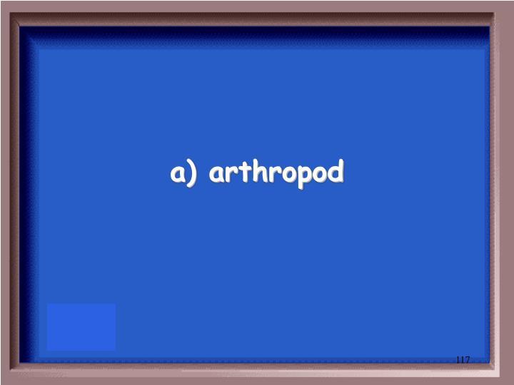 a) arthropod