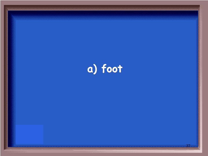 a) foot