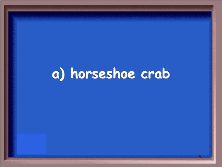 a) horseshoe crab