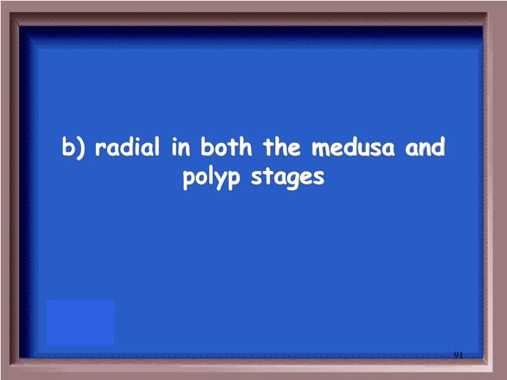 b) radial in both the medusa and polyp stages