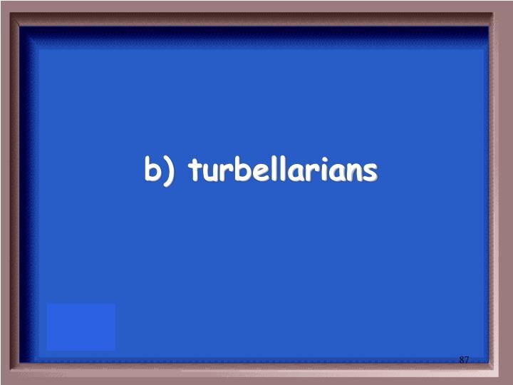 b) turbellarians