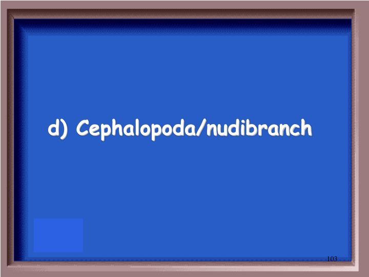 d) Cephalopoda/nudibranch