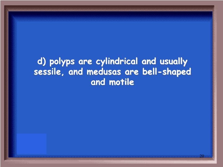 d) polyps are cylindrical and usually sessile, and medusas are bell-shaped and motile
