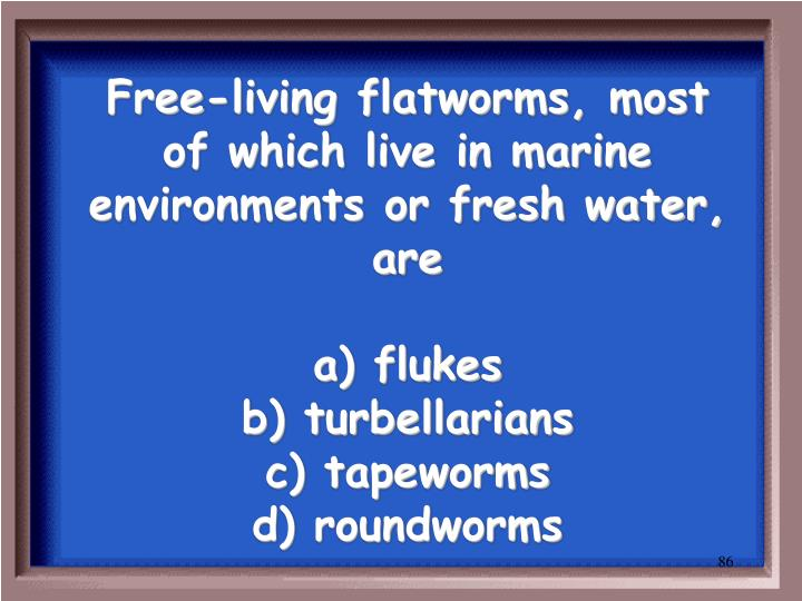 Free-living flatworms, most of which live in marine environments or fresh water, are
