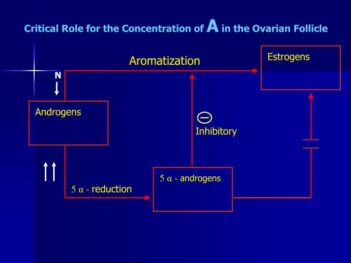 Critical Role for the Concentration of