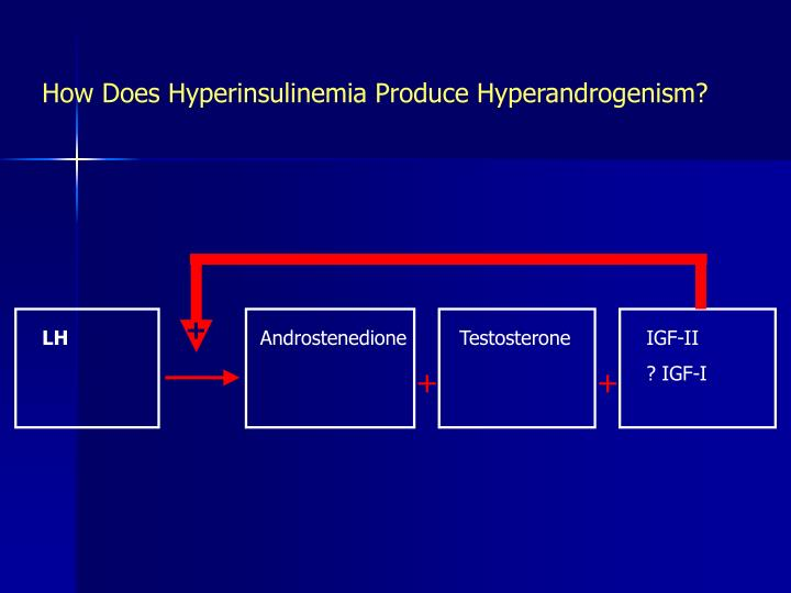 How Does Hyperinsulinemia Produce Hyperandrogenism?