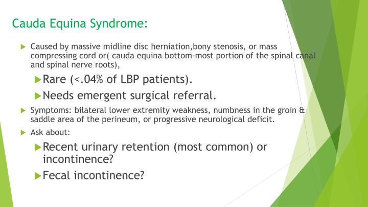Cauda Equina Syndrome: