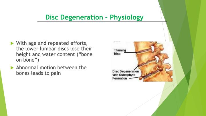 Disc Degeneration – Physiology