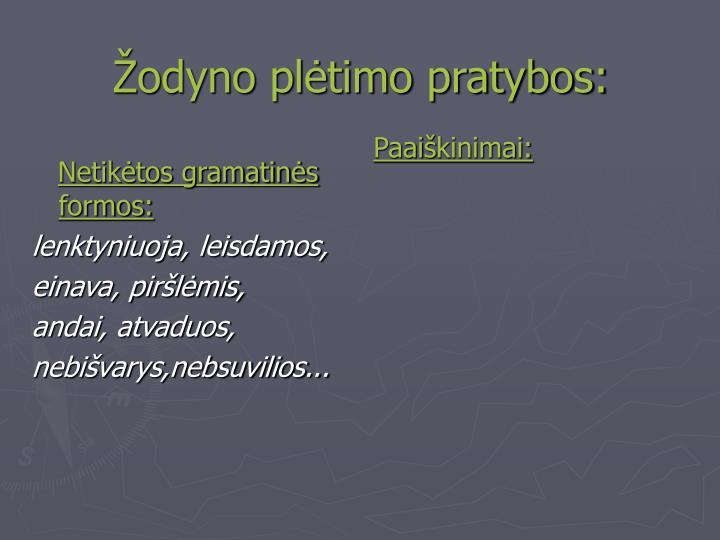 Žodyno plėtimo pratybos: