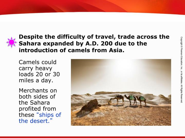 Camels could carry heavy loads 20 or 30 miles a day.
