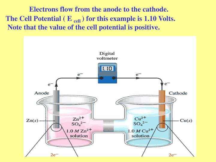 Electrons flow from the anode to the cathode.