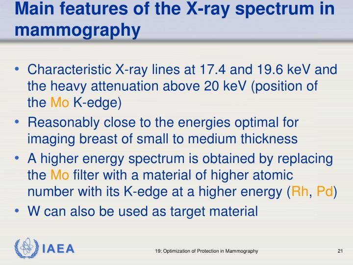 Main features of the X-ray spectrum in mammography