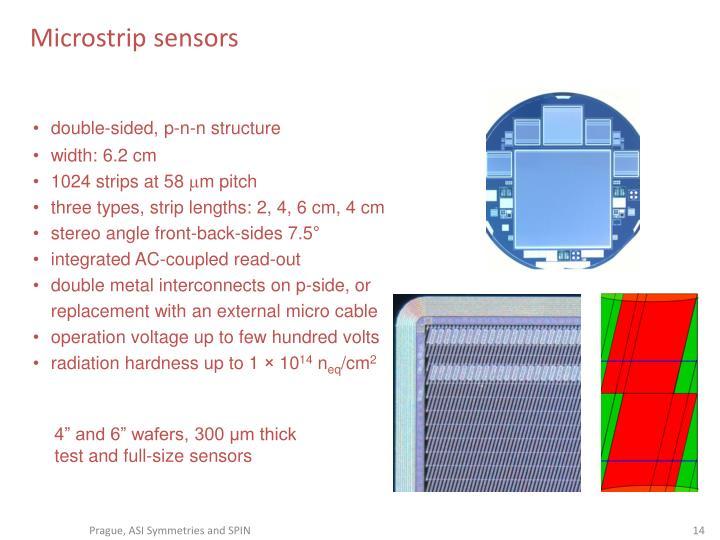 Microstrip sensors