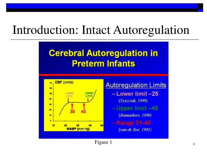 Introduction intact autoregulation