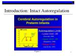 introduction intact autoregulation