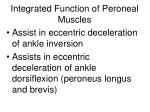 integrated function of peroneal muscles