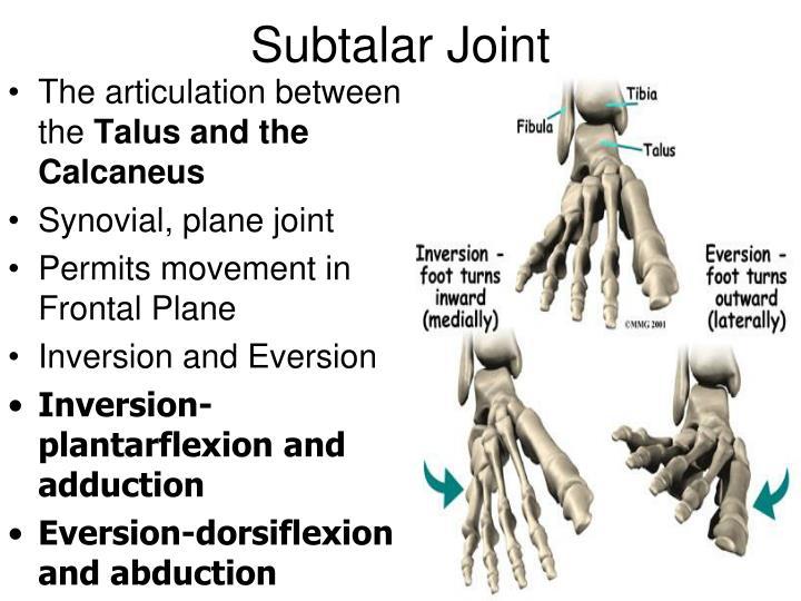 Subtalar Joint
