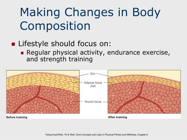 Making Changes in Body Composition