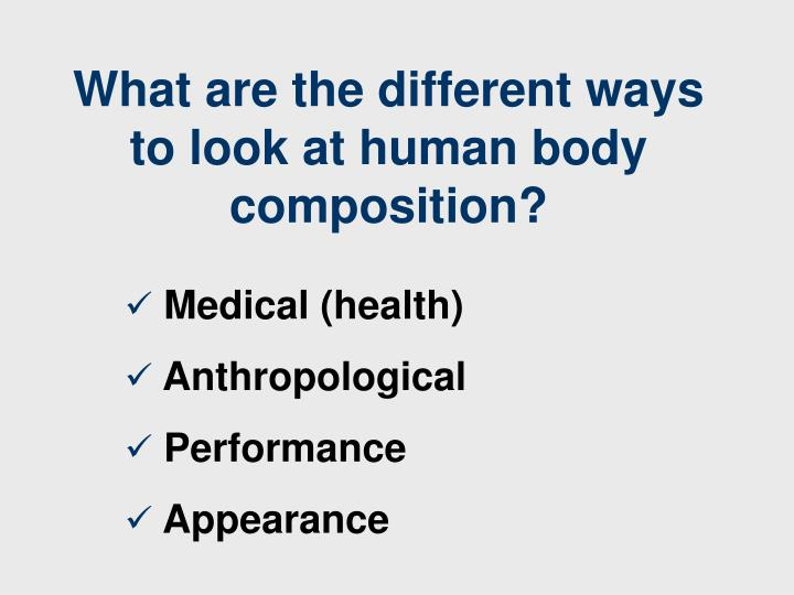 What are the different ways to look at human body composition?