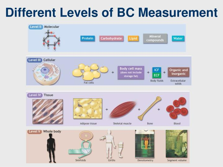 Different Levels of BC Measurement
