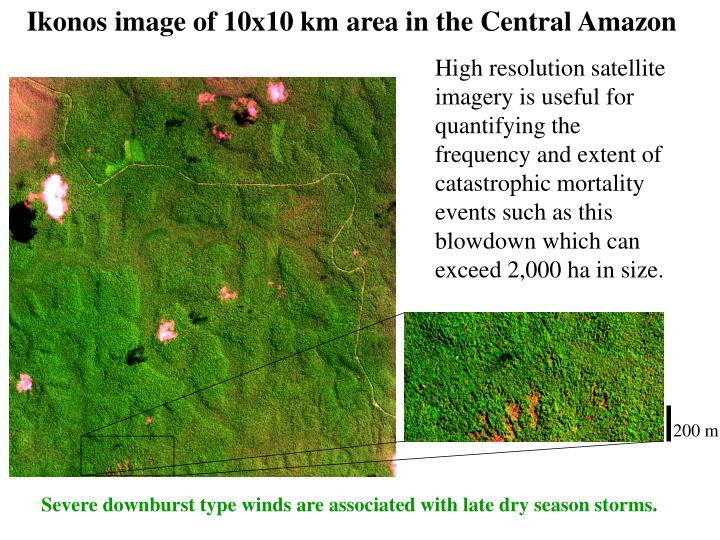 Ikonos image of 10x10 km area in the Central Amazon