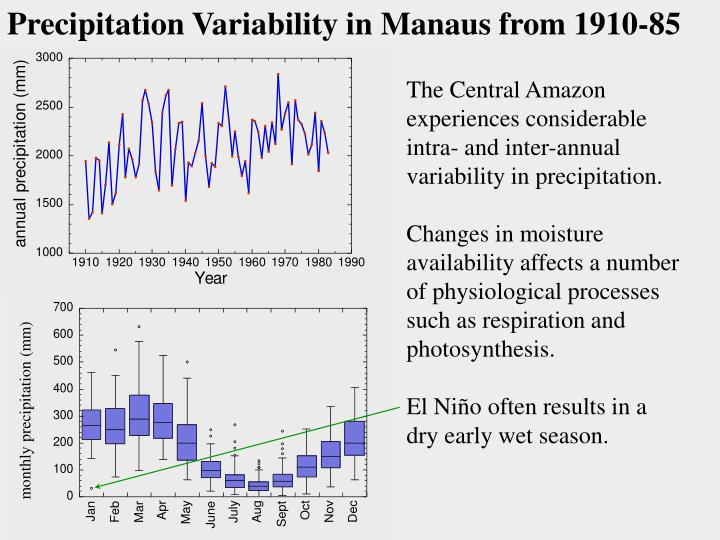 Precipitation Variability in Manaus from 1910-85