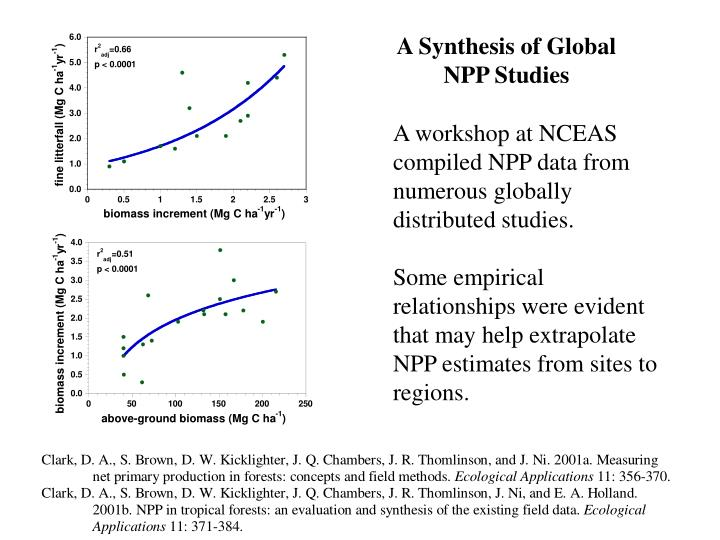 A Synthesis of Global NPP Studies